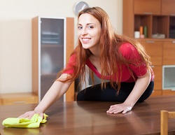 Cleaning House Services in Elephant and Castle, SE1